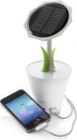 Solar Sunflower als Werbeartikel