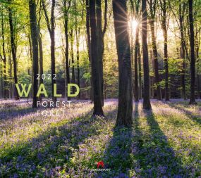 Kalender Wald 2021 als Werbeartikel