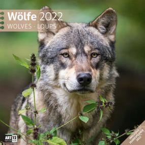 Kalender Wölfe 2021 als Werbeartikel