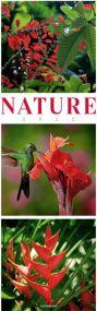 Kalender Nature 2021 als Werbeartikel