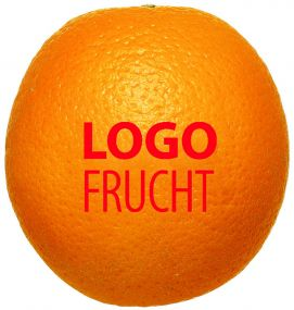 LogoFrucht Orange