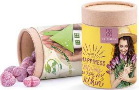 Papierdose Eco Maxi als Werbeartikel